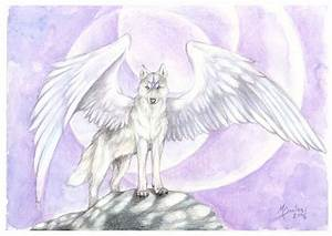 AerinDeer28's Angels & demons wolf pack images white angel ...