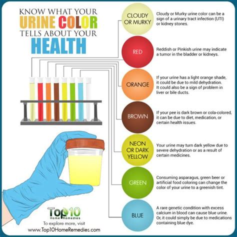 uti urine color what your urine color tells about your health top