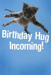 flying cat hug birthday card greeting cards hallmark