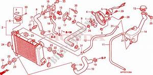 Radiator  Cbr125r  Rs  Rw5  Rw6  Rw8  For Honda Cbr 125 Repsol