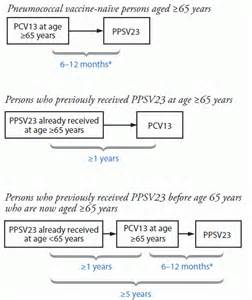 Adult Pneumococcal Vaccine Guidelines