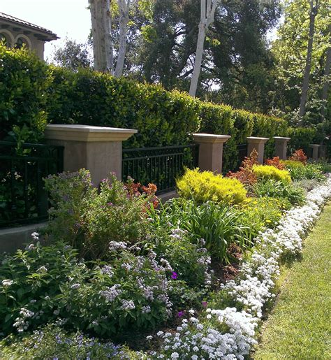 diy landscape design diy landscape design for beginners elly s diy blog