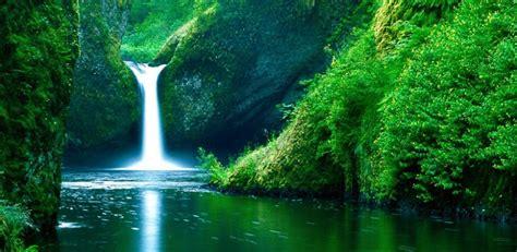 Natural Picture Impremedianet