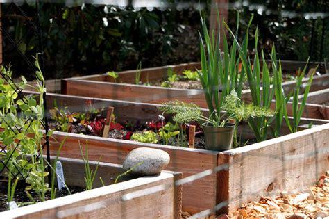 A Simple Garden Fence  Tilly's Nest