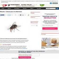 Se Débarrasser Des Mouches Naturellement : combattre les insectes pearltrees ~ Melissatoandfro.com Idées de Décoration