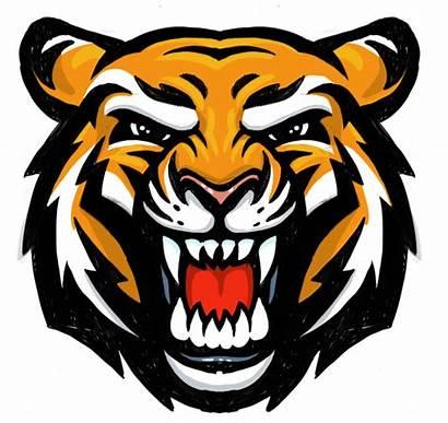 Tiger Mascot Head Clipart Face Basketball Dribbble