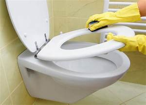Toilet Cleaning | How to Clean Toilets | Cleanipedia