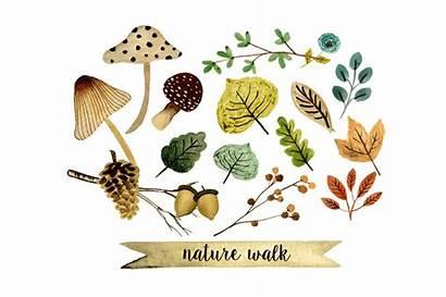 Nature Clipart Clip Walk Watercolor Graphics Creative