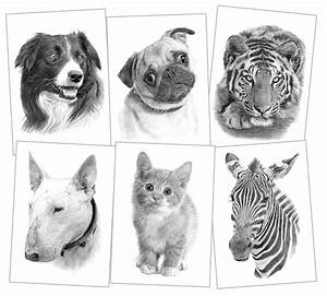 Pet portraits, pencil drawings and signed artwork prints ...