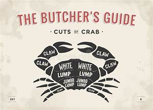 Cut Of Meat Set  Poster Butcher Diagram And Scheme