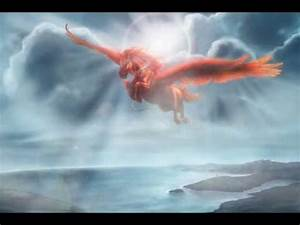 Real Pegasus Found Alive | www.pixshark.com - Images ...