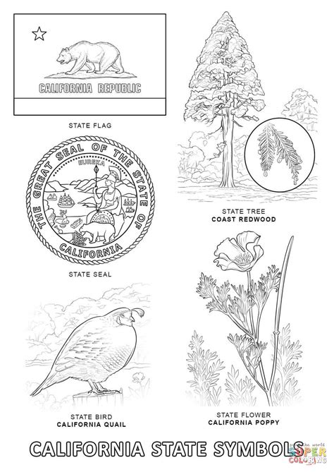 California State Symbols Coloring Pages California State Symbols Coloring Page Free Printable