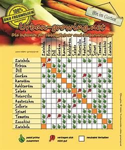 Hochbeet Bepflanzen Im 1 Jahr : pflanzplan welche gem sesorten vertragen sich gut miteinander garten garten ~ Frokenaadalensverden.com Haus und Dekorationen