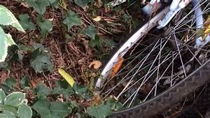 Nid De Guepe Dans Le Toit : frelon asiatique chassant devant un nid de gu pes youtube ~ Medecine-chirurgie-esthetiques.com Avis de Voitures