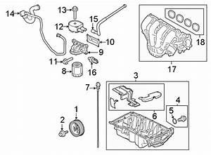 Ford Transit Connect Engine Intake Manifold Gasket