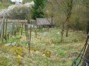 Garten Kaufen Mühlacker by Schreberg 228 Rten Wochenendh 228 User G 252 Nstig Mieten Oder