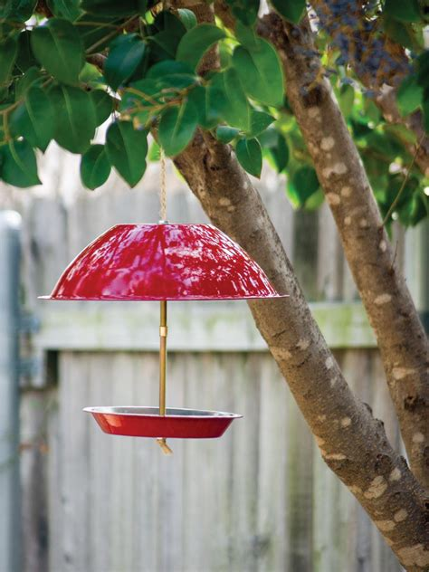 bird feeder hgtv