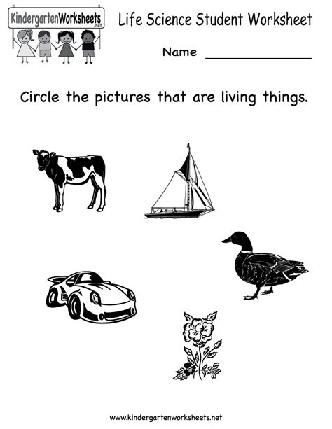 14 best images of worksheets printable kindergarten