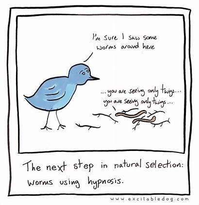 Hypnosis Selection Natural Funny Cartoons Healing Worm