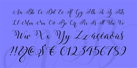 stylish calligraphy demo font  fonts