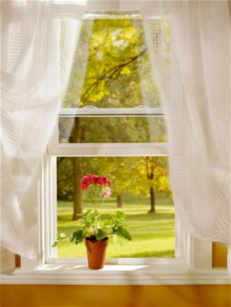 andersen windows  lowes  overview
