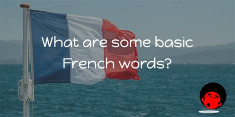 What are some basic French words? - The Mimic Method