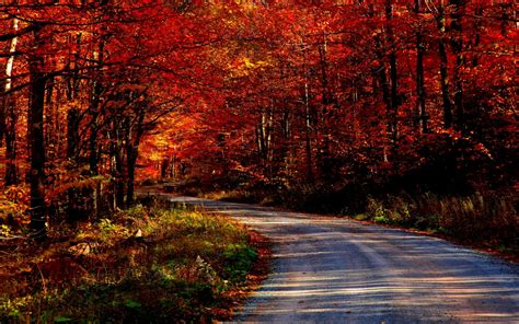Autumn Roads Wallpapers by Awesome Autumn Road Wallpapers Awesome Autumn Road