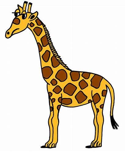 Giraffe Clipart Clipartpanda Clip Panda Terms