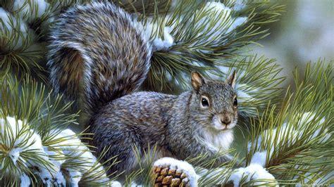 Hd Wallpapers 1366x768 Animals - 1366x768 hd desktop wallpapers animals images