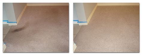 Upholstery Cleaning Salt Lake City by Carpet Cleaning Salt Lake City Rug Cleaner In Salt Lake