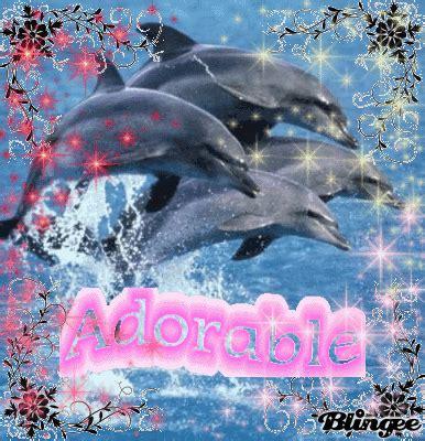 arriere plan de bureau animé dauphin image 76663093 blingee com