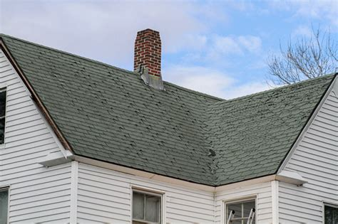 roof curling shingles coastal windows exteriors