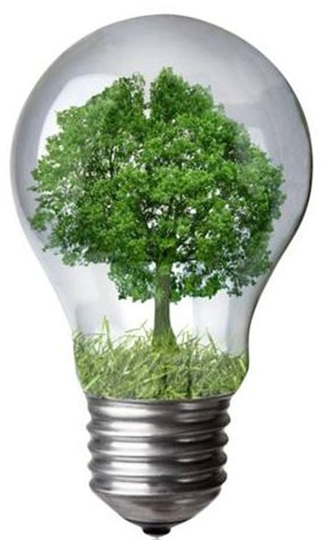 eco unesco  day   education  sustainable
