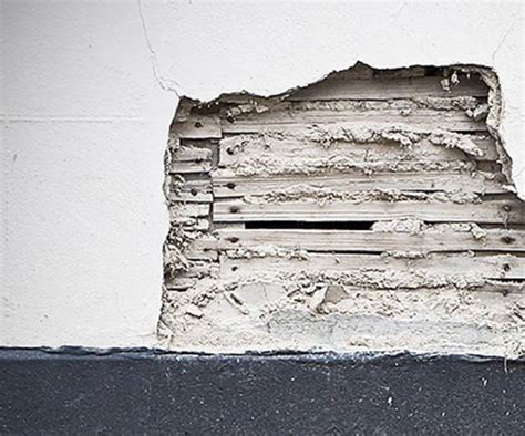 asbestos exposure   home risk removal