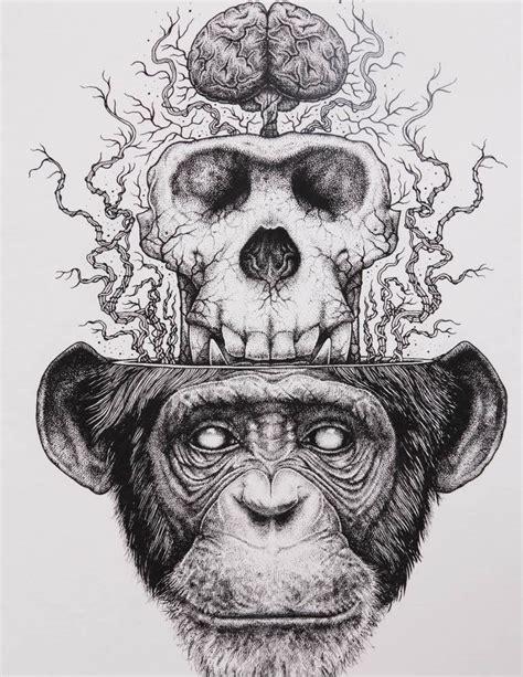 The Monkey Buddha Chimp Skull Extraction Paul Jackson
