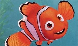 Finding Nemo The Westcoast 360u00b0 Blog