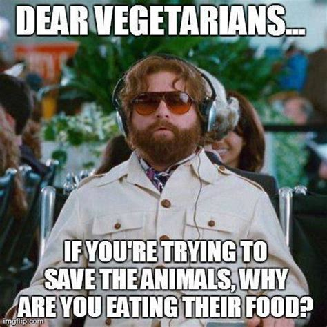 Satire Memes - david derks on twitter quot a message to all vegans from zach galifianakis meme humor funny