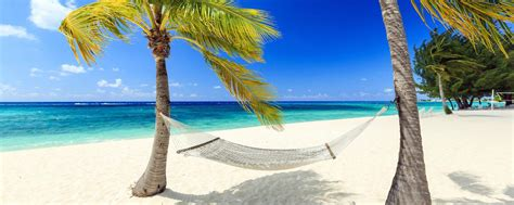 week end cuisine voyage dans les iles cayman easyvoyage