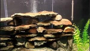 Optimale Aquarium Temperatur : how to setup an african cichlid aquarium tank youtube ~ Yasmunasinghe.com Haus und Dekorationen
