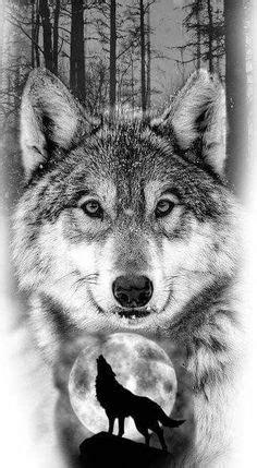 meilleures images du tableau tatouage loup en