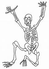 Skeleton Coloring Pages Printable Human Bones Sheets Halloween Skeletons Anatomy Bestcoloringpagesforkids Template Pirate Dinosaur Getcoloringpages Popular sketch template