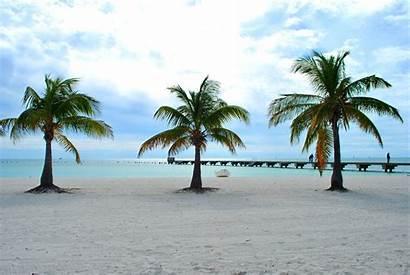 Key West Florida Keys Party Fl Wallpapers
