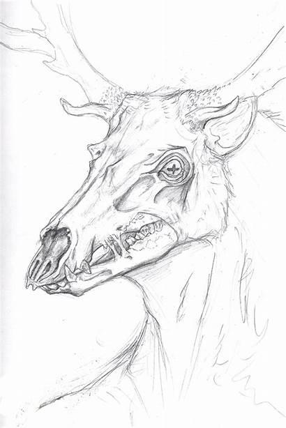 Wendigo Reindeer Deviantart Sketch Salvo Google