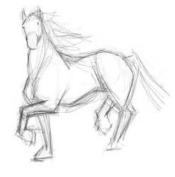 Horse Drawings and Sketches