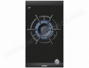 Plaque A Gaz Pas Cher : plaque gaz cuisson gaz ~ Voncanada.com Idées de Décoration