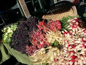 Seeds and Flowers, Sun and Showers! - Oregon City Farmers ...