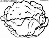 Cauliflower Coloring Pages Colorings Food sketch template