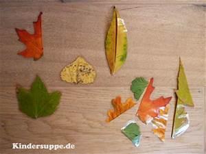 Stockrosen Blätter Haben Löcher : bl tter puzzle kindersuppe abo ~ Lizthompson.info Haus und Dekorationen