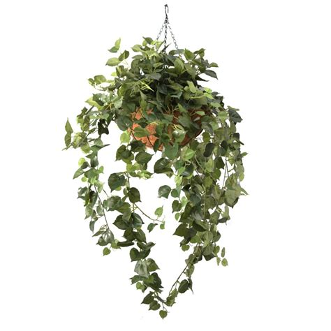 hanging vine plants double cottowood vine 94cm in hanging basket artificial plants online