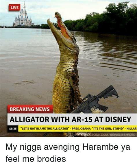 Alligator Meme - live breaking news alligator with ar 15 at disney lets not blamethe alligator pres obama its the